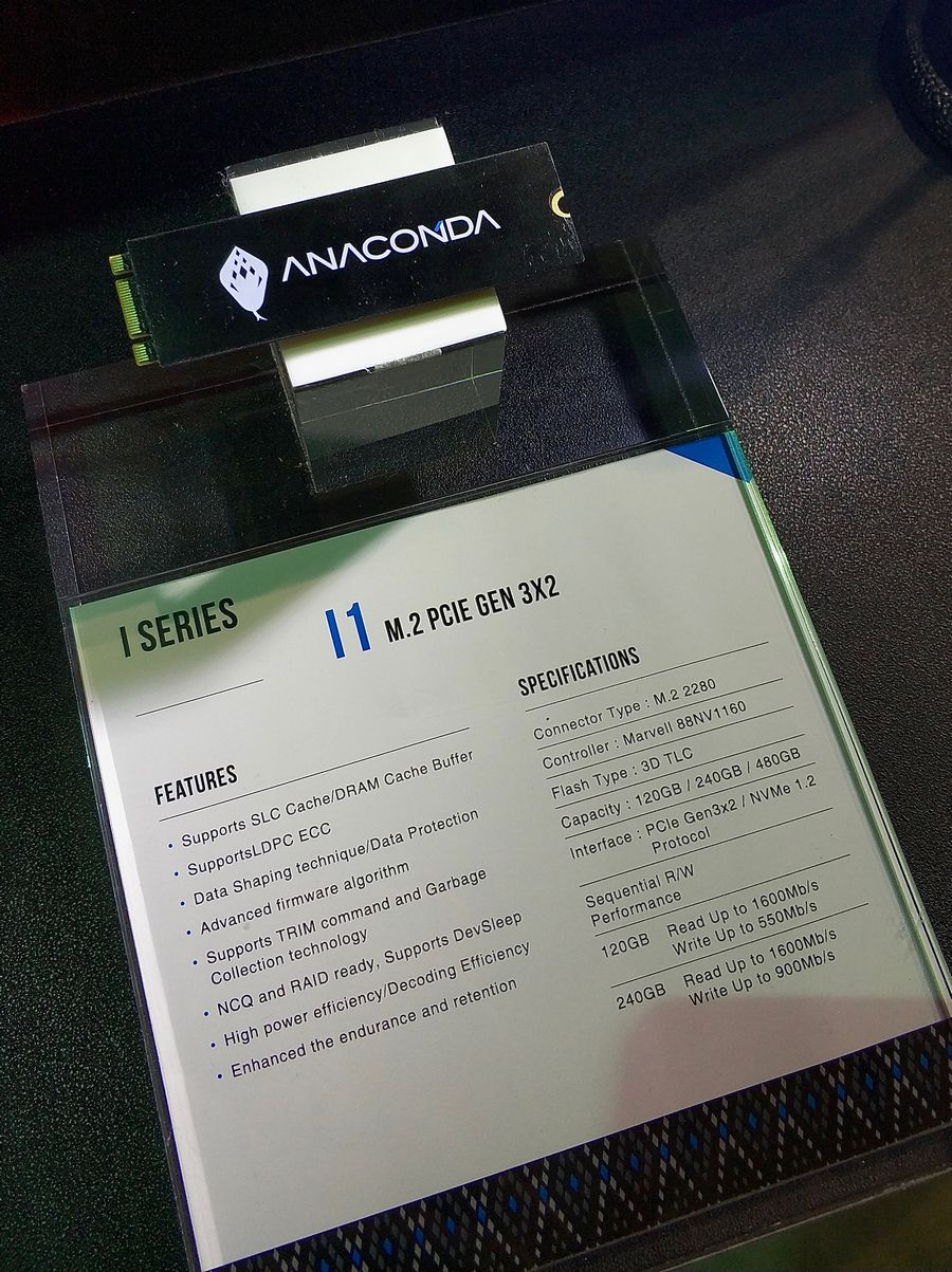 anacomda_03.jpg